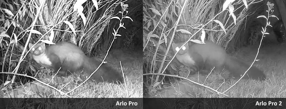 Arlo Pro 2 - Vergleich Kontrast